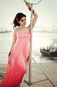 Asin is not getting married